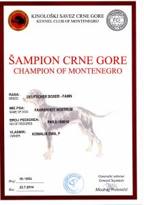 champion-czarnogory-rudolf2