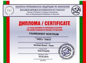 fahrenheit-nostrum-grandchampion-of-bulgaria1